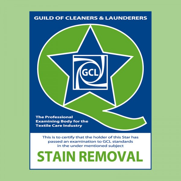 Q Star Exam - Stain Removal